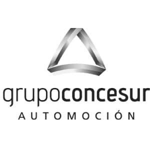 Grupo Concesur ya disfruta de nuestro software de gestión para concesionarios